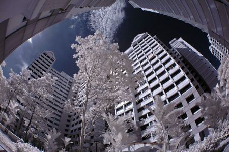 ir: infrared photo - modern building and tree in the parks Stock Photo
