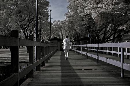 ir: Infrared photo � tree, wooden bridge and lake in the parks