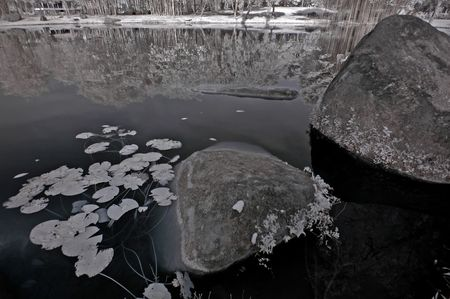 ir: Infrared photo – tree, rock and lake in the parks