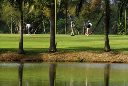 golf, lake and palm in the parks