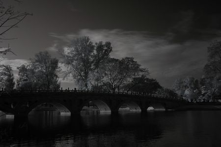 Infrared photo � tree, lake and bridge in the parks photo