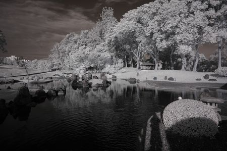 ir: Infrared photo – tree, house and cloud in the parks  Stock Photo