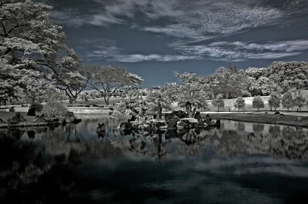 ir: Infrared photo – tree, landscapes and cloud in the parks