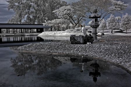 Infrared photo � tree, lake and yoga in the parks photo