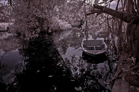 ir: infrared photo - lake, tree and boat in the parks Stock Photo
