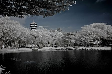 infrared photo - lake, pagoda and tree in the parks  photo