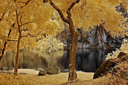 Infrared photo – lake, rock and tree in the parks