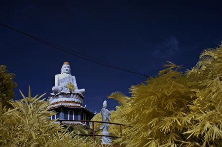 Buddha status and dragon in the theme parks photo