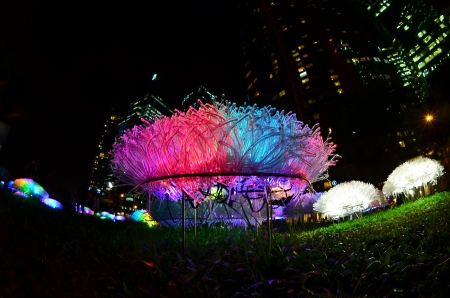 light display: LED flower light display in the city