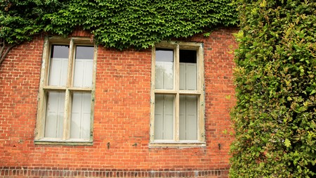 Old Holland House And Window Frame  With Green Leaves On Brick Wall Stock Photo