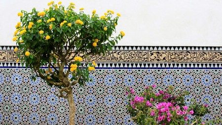 balcony: Blooming Flower With Multi Color Glazed Tile Wall.Old Orient Style Stock Photo