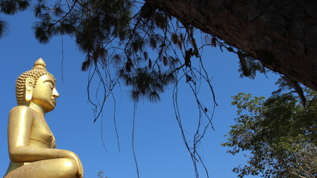 Golden Big Buddha Sitting On High Mountain