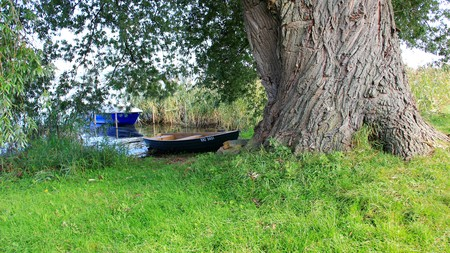 Two small fishing boat under big tree. bordensee lake in Germany Stock Photo