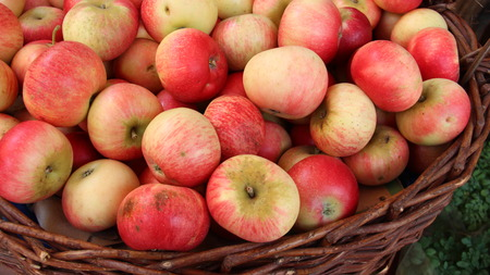 Colored fresh Apple In Basket On  Local Fruits And Vegetables Market In Austria 免版税图像