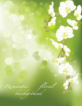 Orchidee op groene abstracte achtergrond Stock Illustratie