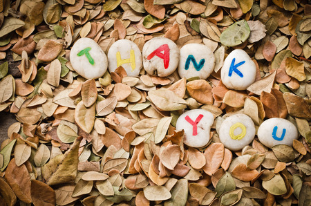 thankfulness: thank you on leaves background