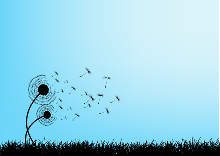 grass close up: Vector dandelion seeds blown in the wind Illustration