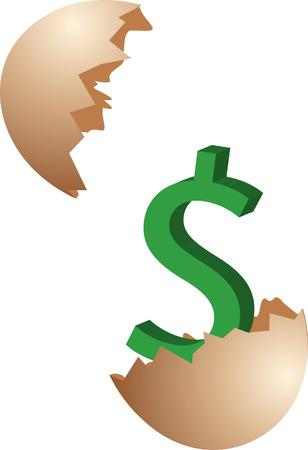Financial Nest Egg