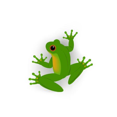 개구리 벡터