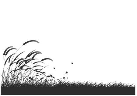herbs wild: hierbas y flores silvestres silueta