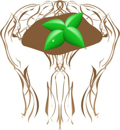 Planting tree illustration Vector
