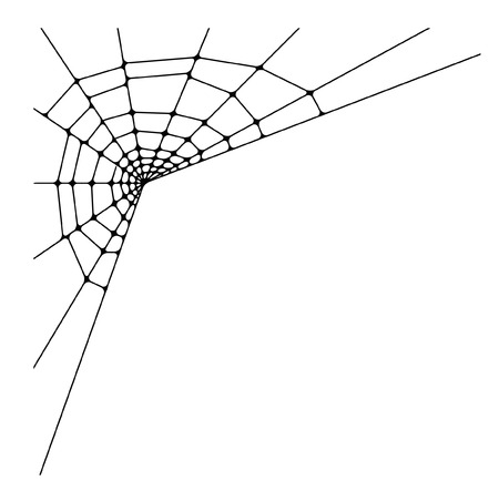 web2: spider web detailed illustration Illustration