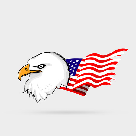 White eagle head with american flag Vector