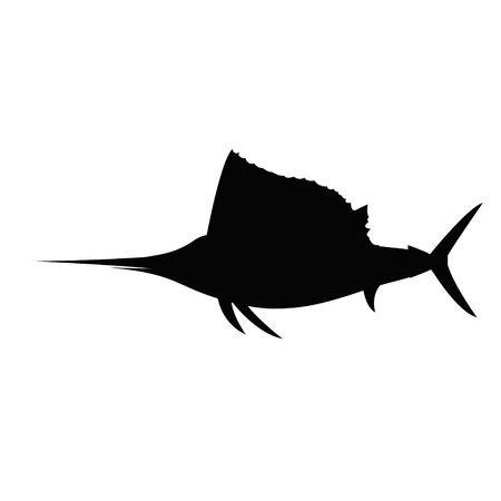 sailfish: sailfish Illustration