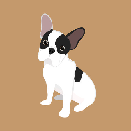 french: French Bulldog Illustration