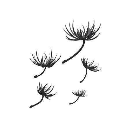 blown: dandelion seeds blown in the wind