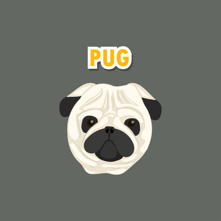 pug dog: pug dog  Illustration