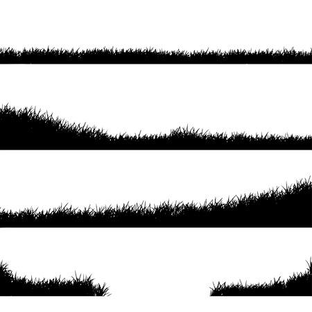 grasslands: Meadow Illustration