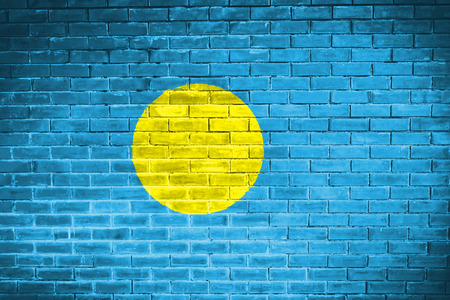 palau: palau flag,wall texture background