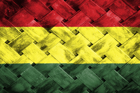 bandera de bolivia: bandera de Bolivia, Bamb� de la armadura