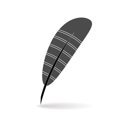 feather vector: feather  vector
