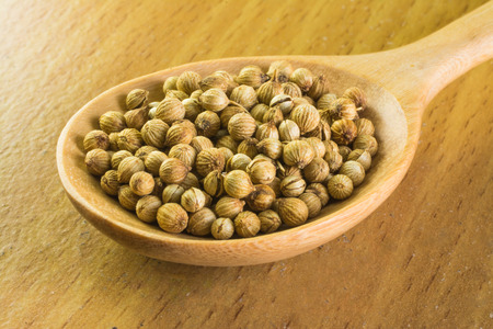 culantro: semillas de cilantro en cuchara de madera Foto de archivo