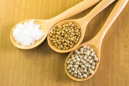 coriander seeds: Salt , coriander seeds , pepper  in wooden spoon Stock Photo