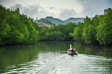 trawler net: Boat fishing with mangrove forest