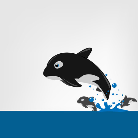 orcinus: The killer whale (Orcinus orca) swims in the open sea. Vector illustration.