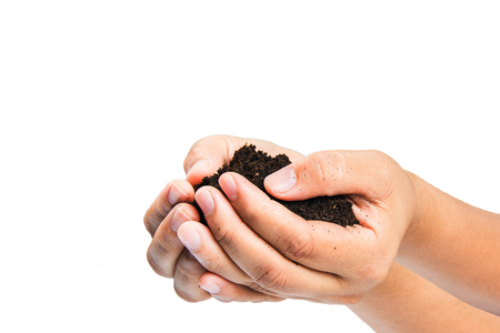 soil  in hands on white background. Stock Photo