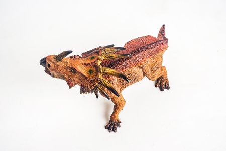 dinosaur , Styracosaurus on white background . Stock Photo