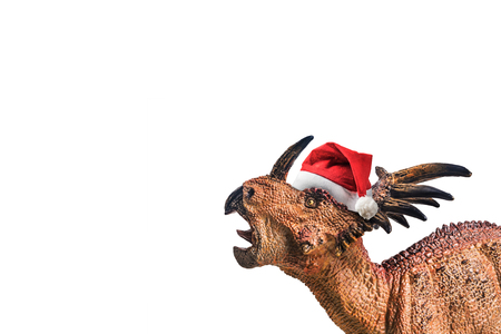dinosaur , Styracosaurus with Christmas hat  on white background .