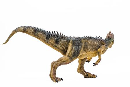 Allosaurus ,dinosaur on white background  . Stock Photo