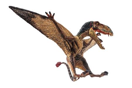 Dimorphodon Dinosaur on white background  . Banque d'images