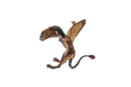 Dimorphodon Dinosaur on white background  . Фото со стока