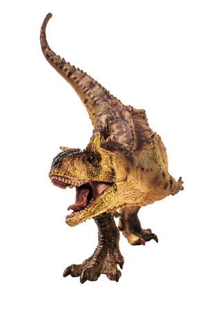 Carnotaurus  Dinosaur on white background   .