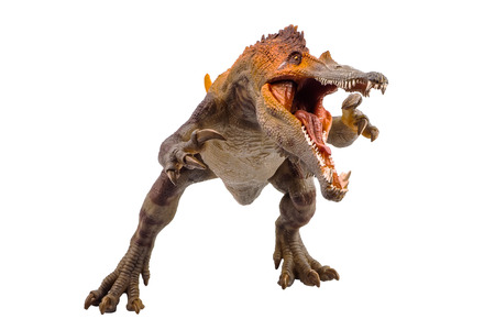 Barionyks, dinozaur na białym tle.