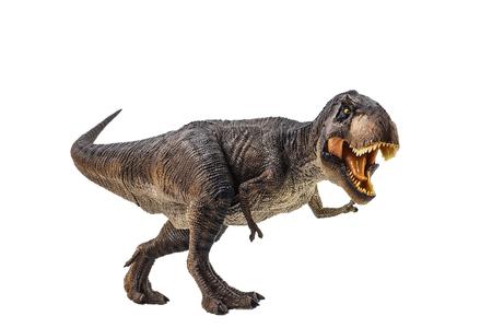 Tyrannosaurus T-rex ,dinosaur on white background . Stock Photo