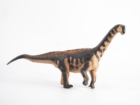 Camarasaurus Dinosaur on white background Stock Photo