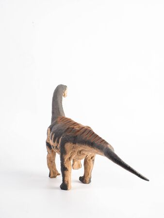 Camarasaurus Dinosaur on white background Stock Photo